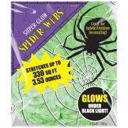 Giftgrünes Spinnennetz nachtleuchtend 100g